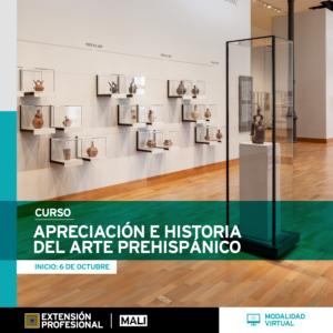 Curso: Apreciación del arte prehispánico