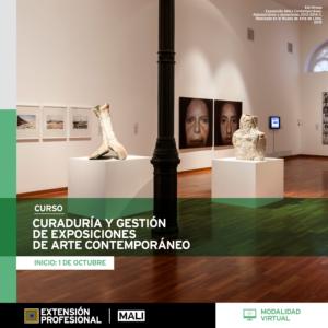 Curso: Curaduría y gestión de exhibiciones de arte contemporáneo
