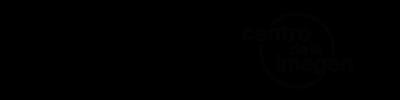 logos_FLAVIA